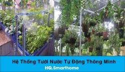 Tư vấn lắp đặt hệ thống tưới nước thông minh tự động cho hoa lan, vườn hoa, vườn rau